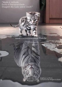 Gatinho e Leopardo LOGO SITE