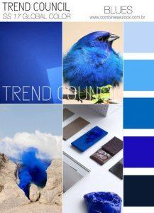 TREND COUNCIL AZUL Palheta de cores Primavera-Verão 2017 LOGO SITE